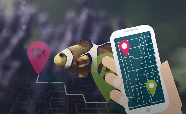 Wer findet Cathrin, wer findet Nico? Die Social Media-Challenge, immer montags und donnerstags!